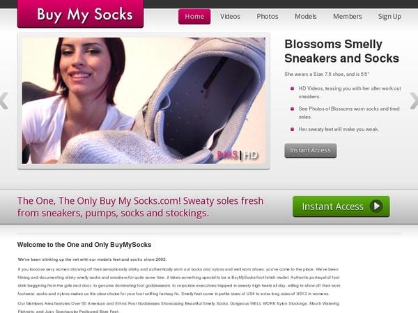 Buy My Socks Username