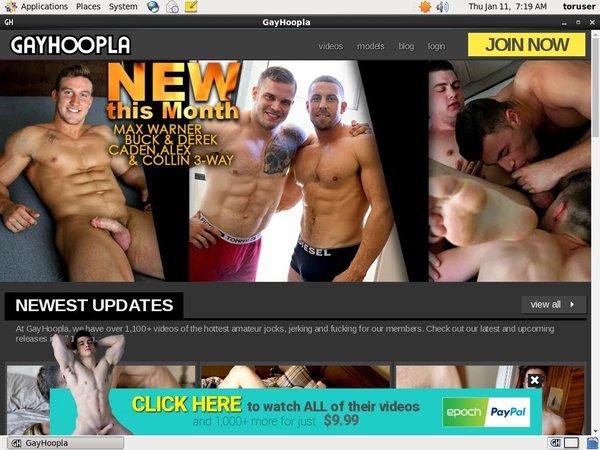 Gayhoopla.com Users