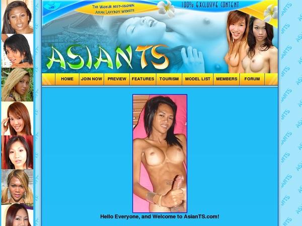 Asian TS Dvd